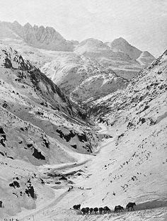 size: Photographic Print: Looking Down Through Cutoff Canyon from Half Mile Below White Pass Summit, Klondike Gold Rush : Travel Vintage Pictures, Old Pictures, Gold Prospecting, Call Of The Wild, Gold Rush, Old West, State Parks, Alaska, Landscape