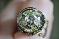 http://sosuperawesome.com/post/149950064572/terrarium-rings-by-naturephilia-on-etsy-so-super