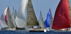 Club Nàutic L'Escala - Noticia Ninuriata VIII (Girona · Costa Brava · Catalunya) #Ninuriatasailingteam #sailing #Ninuriata