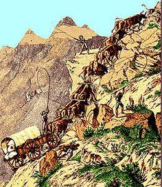 Voortrekkers: In 1836, the Voortrekkers set off northwards into unknown country.