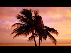 Crockett's Theme (Miami Vice Guitar Extended Remake)
