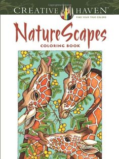 Creative Haven NatureScapes Coloring Book (Creative Haven Coloring Books) by Patricia J. Wynne http://www.amazon.com/dp/0486494500/ref=cm_sw_r_pi_dp_iu5Bvb1X3ZCMB
