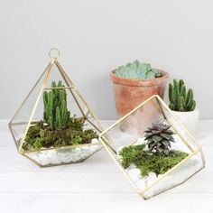 Are you interested in our planters and terrariums? With our Geometric Terrarium you need look no further.
