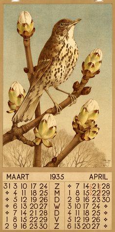 Jan Voerman Jr. ( illustrator ) mars -avril 1935