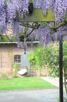 ext mai 2016 Un Lieu Particulier  Location d'espace extérieur pour prise de vue photo et vidéo près de Lille.