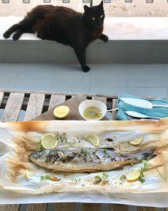 εύκολο ψάρι ψητό στο φούρνο, στη λαδόκολλα, με ρίγανη και λεμόνι, σε 25 λεπτά & Jiddu Greek Recipes, Fish, Greek Food Recipes, Ichthys