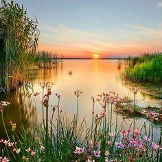 Quelle belle paix, belle quiétude... Magnifique, belle démarche pour débuter la journée!