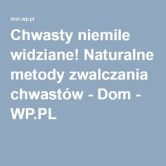 Chwasty niemile widziane! Naturalne metody zwalczania chwastów - Dom - WP.PL