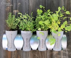 A gorgeous way to display your indoor herb garden from Chieek Unique Gifts https://www.etsy.com/listing/180560363/indoor-herb-garden-planting-set?ref=shop_home_feat_3