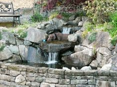 Bachlauf mit Gartenteich im Kleingarten anlegen
