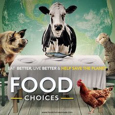This globally acclaimed film explores the impact of food choices on human health, on the environment and on the lives of other living species. Food Choices Documentary, Documentary Film, Plant Based Nutrition, Plant Based Diet, Vegan Documentaries, Trailer Peliculas, Joe Cross, Journey, Food Industry