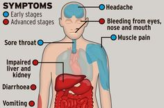 Ebola Virus Effected Body | Ebola virus: What is it and how does it spread? - Mirror Online