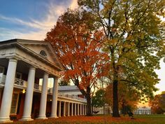 10 Places to Enjoy Dazzling Fall Foliage in the Charlottesville Area!
