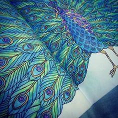 """#colouring #peacock #milliemarotta #tropicalwonderland """