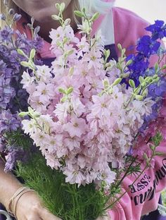 Larkspur Colorado | Wholesale Flowers Light Pink Flowers, Cut Flowers, Fresh Flowers, Beautiful Flowers, Larkspur Plant, Larkspur Flower, Larkspur Colorado, Cut Glass Vase, Flowers For Sale