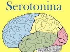 Serotonina - beneficii, riscurile deficitului si surse alimentare – Natura Vindecătoare Cancer, Health, Fitness Plan, Allergies, Minerals, Health Care, Salud
