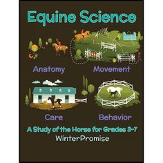 Have a student that loves horses? Why not capitalize on that and spend a year studying them! Enjoy wonderful notebooking and engaging living books as you study the anatomy, movement, care & behavior of horses!  #homeschool #charlottemason #science #curriculum #livingbooks #notebooking