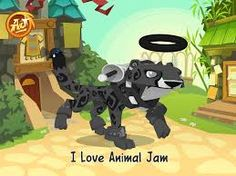 Image of: Snow Leopard My Animal Jam Account Gram Me Pinterest Best Aniaml Jam Images Animal Jam Play Wild Animal Games