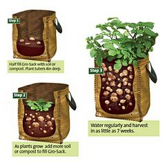 US Direct | PE Vegetables Planting Bag Garden Balcony Potatoes Tomatoes Planter 8.79
