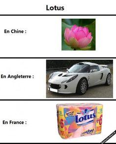 L'histoire du Lotus selon le pays...