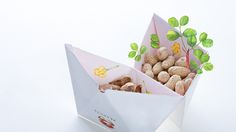 useful #paenuts #Packaging #Design  on Behance