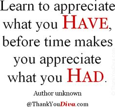 Learn to appreciate what you have, before time makes you appreciate what you had. – Author unknown