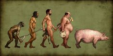 Evolution of man?