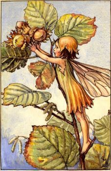 The Hazel Nut Fairy (Jigidi jigsaw puzzle - 216 pieces). Cicely Mary Barker - Flower Fairies of the Autumn