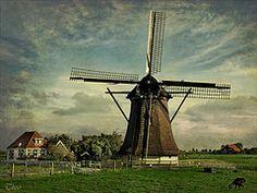 Friesland, NL...so very typically Dutch...LOVE!!!
