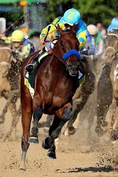American Pharoah was victorious at the Belmont Stakes Saturday, becoming the first horse in 37 years to win the Triple Crown. Pretty Horses, Horse Love, Beautiful Horses, Horse Fly, Fox Racing, Horse Racing, Vespa Racing, Valentina Rupaul Drag Race, Logo Caballo