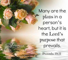 Proverbs 19:21     https://www.facebook.com/photo.php?fbid=563861383656423