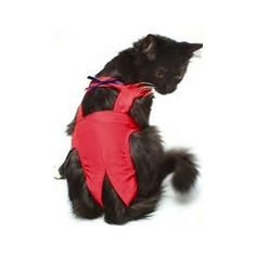 """Joybies Red Piddle Pants for Medium Cat (Measuring 15""""-17"""" Along Back From Collar to Base of Tail)"""