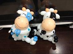 造型氣球 扭氣球 乳牛 milk cow balloon twisting