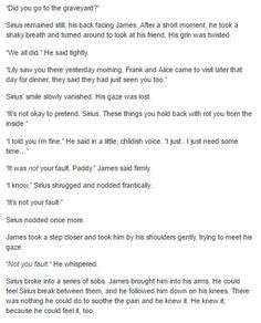 Sirius Black after Marlene´s death part 2