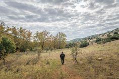 Covid Paths - 6 χιλιόμετρα στον παράδεισο της Δυτικής Θεσσαλονίκης - Parallaxi Magazine Paths, Mountains, Nature, Travel, Naturaleza, Viajes, Destinations, Traveling, Trips