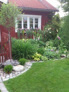 BIKAS TRÄDGÅRD: Underbara sommar....