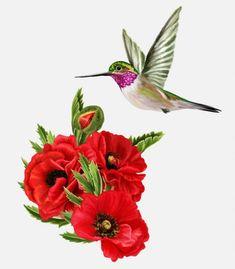 Colibríes de pájaros pequeños y amapolas rojas — Ilustración de stock Cheesy Potato Casserole, Cheesy Potatoes, Little Birds, Stock Photos, Plants, Hibiscus, Red Poppies, Red Flowers, Irises