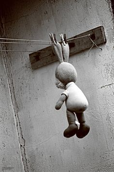 bunny hung out to dry on the clothesline. sweet.