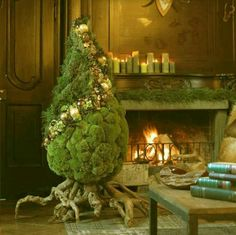 Funky Christmas tree -looks like something you might see at Hagrid's from Harry Potter during Christmas lol