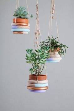 DIY wooden ring hanging planter for your favorite small houseplants