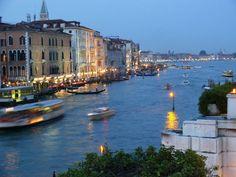 3.16.11: Venice takes New York | New York Social Diary