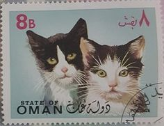 Postage Stamps - Fantasy country - State of Oman-cats (I) Old Stamps, Vintage Stamps, What's New Pussycat, Art Postal, Postage Stamp Art, Penny Black, Stamp Collecting, Mail Art, Fantasy