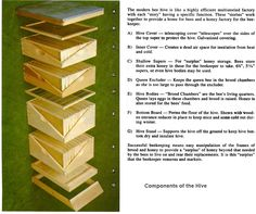 How To Put Together A Bee Hive