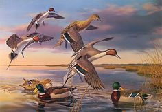 "Waterfowl Paintings | There Goes The Neighborhood"" - Pintail and Mallards by artist Randy ..."