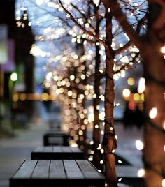 City sidewalks dressed in Holiday style ♥