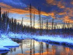 Proshots - Star Trails and Aurora Borealis, Whitehorse, Yukon - Professional Photos from Webshots Mountain Wallpaper, Sunset Wallpaper, Tree Wallpaper, 1080p Wallpaper, Wallpapers, Drawing Sunset, Tree Artwork, Forest Mountain, Winter Magic