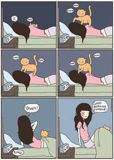 I always say that my cat is my alarm clock... by Cat versus Human