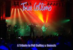 #True #Collins 13.11.2015 #Stadthalle #Dransfeld
