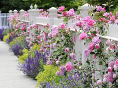 Flower decoration garden ideas