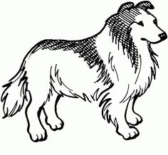 animal coloring pages for kids collie - Free Printable Dog Coloring Pages